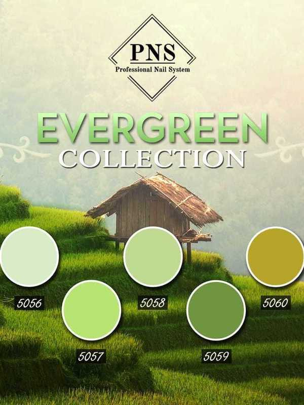 Evergreen collection 5056-5060