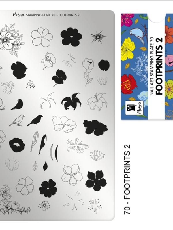 Plate 70 Footprints2